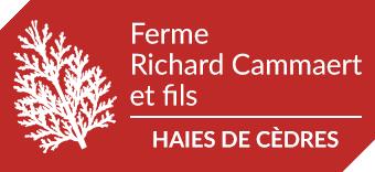 Haies de cèdres, Ferme Richard Cammaert et fils